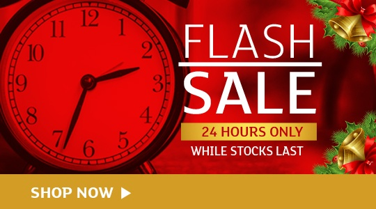 Flash Sale - 24 HOURS ONLY!