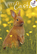Happy Easter Cards Pack of 5