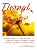 Pocket Eternal 2019 Scripture Diary