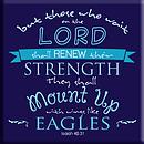 Eagles Magnet