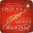 Great Joy Coaster