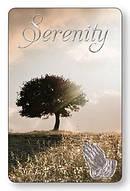 Serenity Prayer Laminated Card Pack of 12