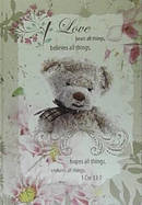 Journal: Love Bears All Things