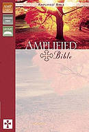 Amplified Bible Duotone Orchid Plum