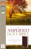 Amplified Thinline Holy Bible: Burgundy, Bonded Leather