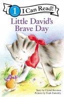 Little Davids Brave Day Pb