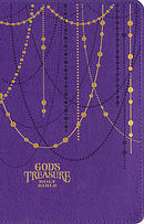 NIV God\'s Treasure Holy Bible, Leathersoft, Amethyst: Golden Promises and Priceless Stories