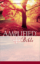 Amplified Bible: Paperback