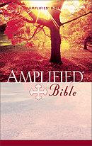 Amplified Bible: Paperback