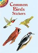 Common Birds Stickers
