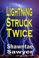 Lightning Struck Twice: A Memoir