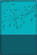 A Woman After God's Own Heart Bible - Teal