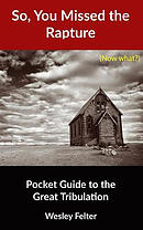 So, You Missed the Rapture: Pocket Guide to the Great Tribulation