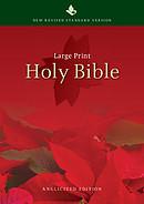 NRSV Large-Print Text Bible