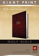 NLT Bible: Hardback, Giant Print