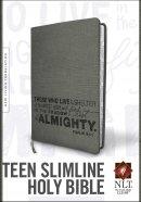 NLT Teen Grey Slimline Bible