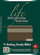 NLT Life Application Bible Personal Size Imitation Leather Taupe Stone