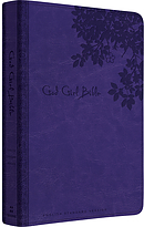 ESV God Girl Bible: Imitation Leather, Purple
