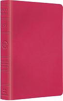 ESV Kids Compact Bible: Pretty Pink, LeatherLike