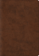 ESV Archaeology Study Bible (TruTone, Brown)