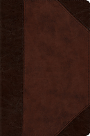Esv Compact Bible (Trutone, Brown/Walnut, Portfolio Design)