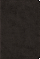 Esv Large Print Compact Bible (Trutone, Black)