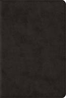 ESV Large Print Compact Bible