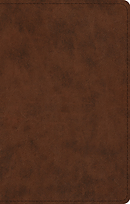 ESV UltraThin Bible (TruTone, Brown)