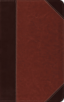 ESV Thinline Reference Bible (TruTone, Brown/Cordovan, Portf