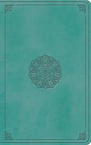 ESV Large Print Value Thinline Bible TruTone, Turquoise