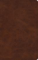 ESV Large Print Thinline Bible, TruTone, Deep Brown