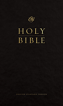 ESV Pew Bible (Black)