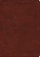 ESV Study Bible (TruTone, Chestnut)
