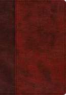 ESV Study Bible (TruTone, Burgundy/Red, Timeless Design)