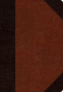 ESV Student Study Bible (TruTone, Brown/Cordovan, Portfolio Design)