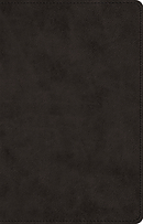ESV Prayer Bible (TruTone, Black)