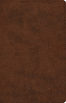 ESV Large Print Thinline Reference Bible (TruTone, Brown)