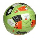 Throw And Tell Life Application Ball