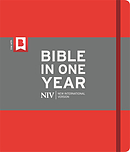 NIV Journalling Bible in One Year