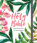 NIV Bible for Verse-Mapping