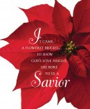 Savior Poinsettia Christmas Bulletin, Large (Pkg of 50)