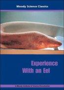 Experience An Eel Dvd
