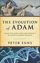 Evolution Of Adam