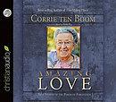 Amazing Love Audio Book