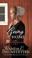 Going Home (The Brides Of Webster County Book 1) Paperback