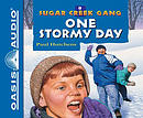 One Stormy Day (Library Edition)