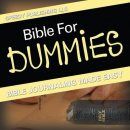 Bible For Dummies: Bible Journaling Made Easy
