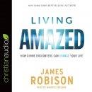 Living Amazed Audio Book