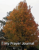 My Prayer Journal: Mark 11:24 Therefore I Tell You, Whatever You Ask in Prayer, Believe That You Have Received It, and It Will Be Yours.