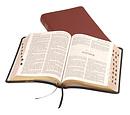 KJV Text Bible: Burgundy, Calfskin, Thumb Index